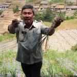 Suap Impor Bawang Terbongkar, Kementan Audit Penerbitan RIPH