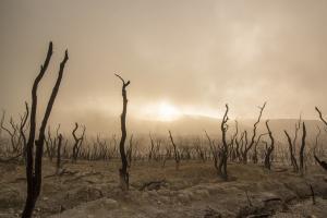 Kekeringan, Gunung Kidul Akan Kucurkan Dana Tak Terduga