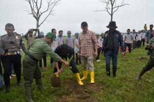 Warga Desa Padasari Tegal Tanam 4.000 Bibit Pohon