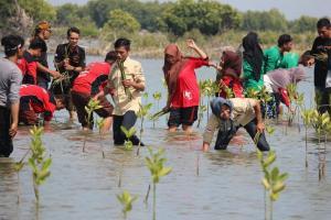 Abrasi Pantai Tanjung Elok Kendal Ancam Permukiman