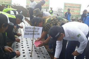 Petani Semarang Ditipu Importir Nakal
