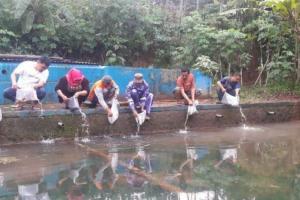 Caleg Gerindra Berikan 5.000 Benih Nila di Desa Ngadisepi