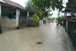 Tlogosari Semarang Langganan Banjir
