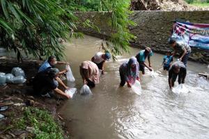 370 Ribu Benih Ikan Ditebar di Perairan Umum Kudus
