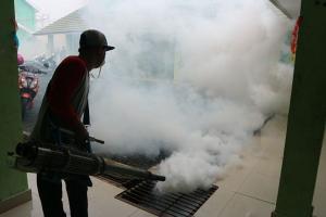 'Fogging' Dapat Menyebabkan Keracunan
