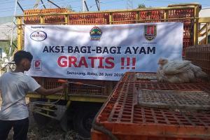 Belasan Ribu Ayam Potong Dibagi-bagikan di Semarang