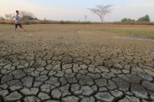 BMKG: 80 Persen Wilayah DIY Berstatus Awas Kekeringan