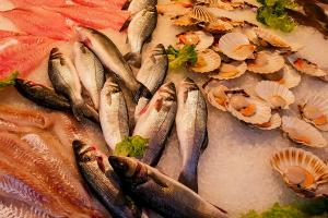 Tingkat Konsumsi Ikan Laut di Purbalingga Terendah Se-Jateng