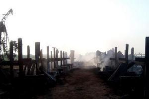 Kebakaran Landa Peternakan Kambing di Kudus