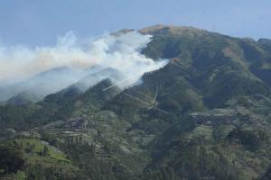 Hutan Gunung Slamet Terbakar