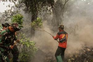 Kebakaran di Gunung Slamet Berhasil Ditangani