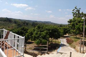 Kementan Tata Kawasan Hortikultura