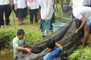 Tekan Kemiskinan, Pemkot Yogyakarta Bentuk 3 Kube