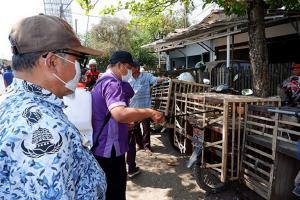 Unggas di Kota Tegal Terinfeksi Flu Burung