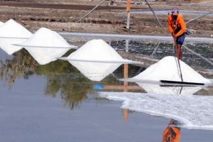 Melimpah, Produksi Garam Jateng pada 2019