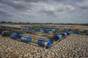 DIY dan Jateng Alami 200 Hari tanpa Hujan