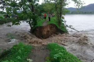 Tanggul Jebol, 51 Hektare Sawah di Klaten Terendam