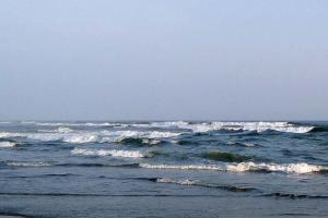BMKG Prakirakan Gelombang Tinggi Terjadi di Laut Selatan Jabar-Jateng-DIY