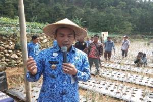 Pemkab Batang Gandeng Bulog Siapkan Operasi Pasar Bawang Putih