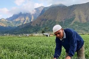 Pakar Pertanian Ingatkan  Pentingnya Kembangkan Budi Daya Bawang Putih