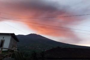 Pasca Erupsi, Warga Sekitar Gunung Merapi Tetap Bertani