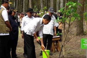 Jokowi Minta Masyarakat Terima WNI dari Wuhan Setelah Observasi di Natuna