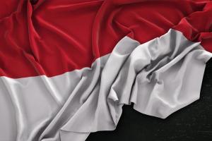 Demokrasi di Indonesia dianggap perlu perubahan paradigma
