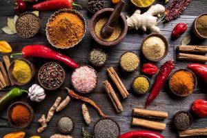 Tingkatkan BUMDes Gastronomi Melalui Indonesia Spice Up the World