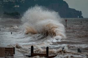 Potensi Tsunami 28 Meter, Pacitan Diminta Siapkan Skenario Terburuk