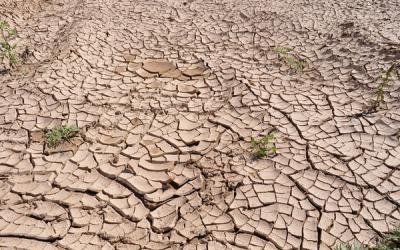 Satu Desa di Banyumas Krisis Air Bersih