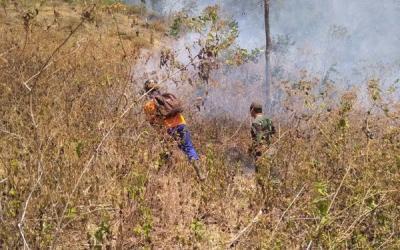 Hutan Gunung Pegat Terbakar