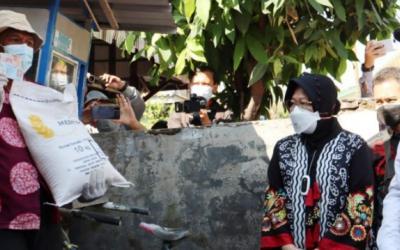 Mensos Cek Akurasi Penyaluran BST di Kota Pekalongan