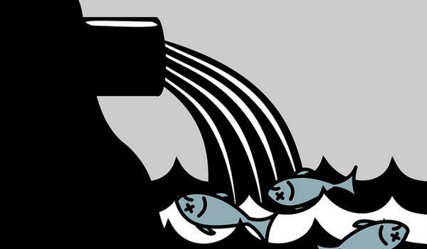 Saluran Irigasi Karangnongko Bantul Terkontaminasi Limbah