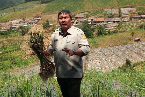 Ekspor Naik, Produk Hortikultura Indonesia di Jalur Hijau